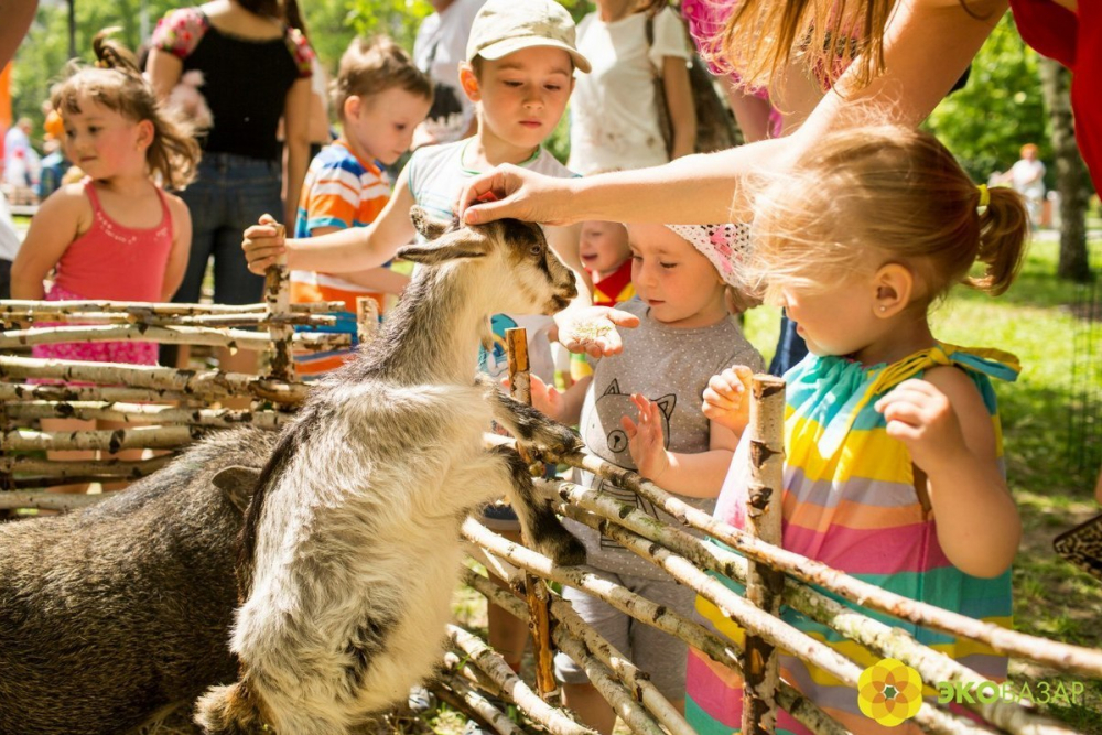 Стресс и страдания животных: контактные зоопарки скоро будут под запретом