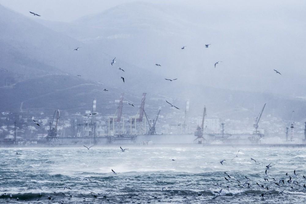 Ураган и опасные явления ожидаются в Новороссийске в ближайшие часы