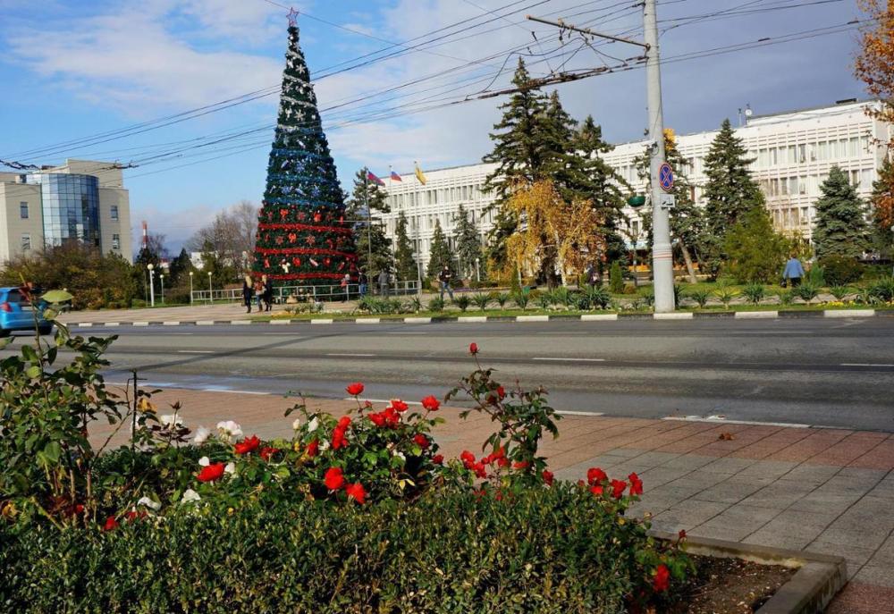 Чья елка длиннее: Новороссийск потягается со столицами на равных