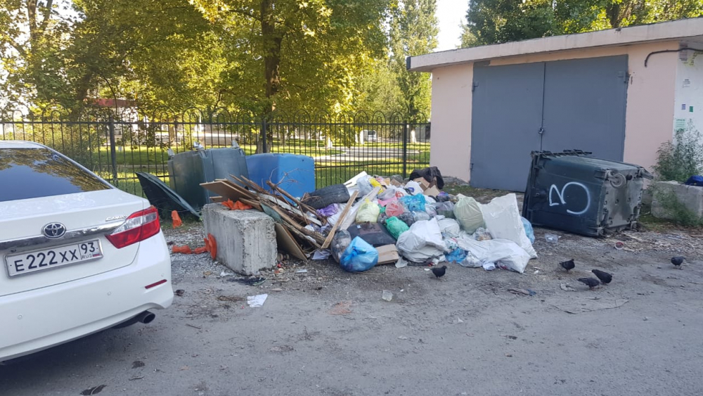 Главной достопримечательностью десятой школы Новороссийска стал специфичный запах и такой же пейзаж