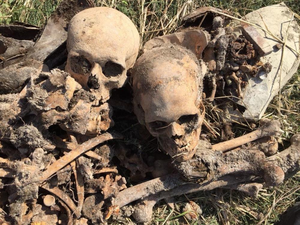 Останки героя ВОВ Захара Окружко из Ростовской области найдены в Новороссийске