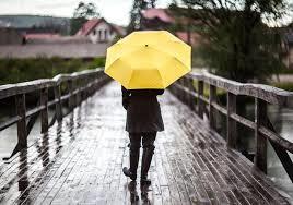 Первый день зимы в Новороссийске будет дождливым