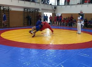 Краевые соревнования по самбо завершились в Новороссийске