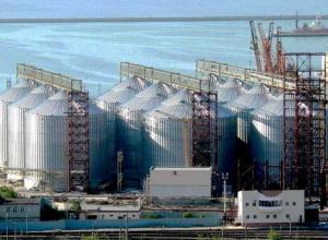 Новый генеральный директор назначен в «Новороссийский зерновой терминал»
