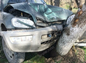 Владельцу джипа из Новороссийска дерево бросилось под капот