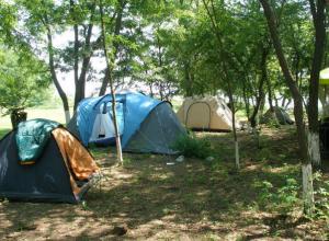 Следствием семейной разборки в палатке стали два трупа