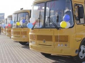 Требования для автобусных перевозок детей ужесточат в Новороссийске