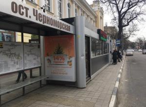 Опасные цветочки Новороссийска или как войти в автобус, не став инвалидом