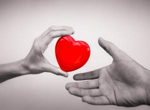 Календарь: 20 апреля - В России Национальный День донора крови