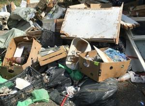 Центральный район Новороссийска продолжает тонуть в мусоре