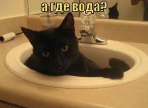 Жители Новороссийска останутся без воды