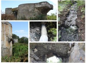 Более 20 лет канализационные стоки текут по лесу под Новороссийском