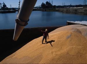 На Новороссийские причалы пришел рекордный объем зерна