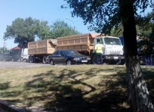 Вырастет к осени пшеница на автодорогах Новороссийска, - уверены горожане