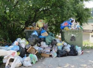 Новая схема вывоза мусора будет разработана для поселков Новороссийска