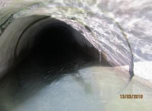 Рыба в озере Абрау под Новороссийском  может пострадать из-за строительства коттеджей на берегу