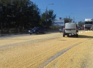 Кукурузный рай на дорогах Новороссийска