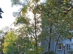 Замены асфальтового покрытия двора ждут годами в Приморском районе Новороссийска