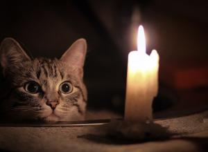В разных районах Новороссийска отключат свет и газ