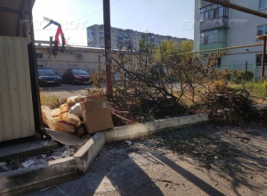 Больше года на злосчастную мусорку жалуются жители Южного района Новороссийска