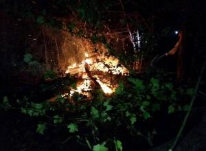 Только к утру удалось ликвидировать пожар в Цемесской роще Новороссийска