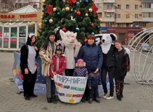 Так была ли «елка»? Новая версия новогоднего праздника для детей в Новороссийске
