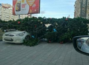 Ураган порывами до 40 метров в секунду ожидается в Новороссийске