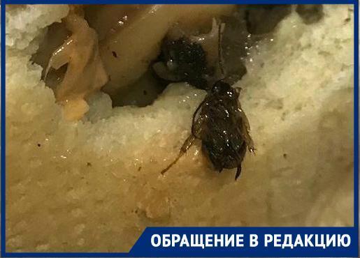 Бутерброд с тараканами подали жительнице Новороссийска