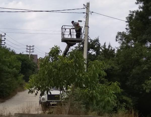 Кобры спасут жителей пригорода Новороссийска
