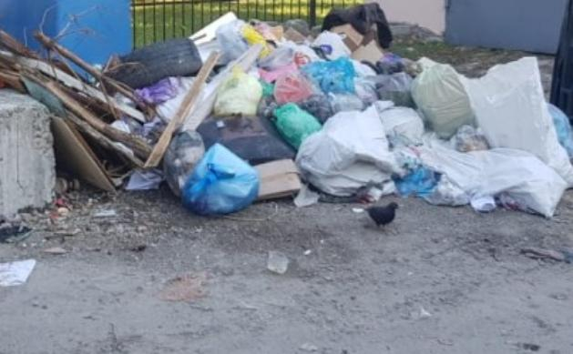 Горы мусора могут засыпать Новороссийск уже в январские праздники
