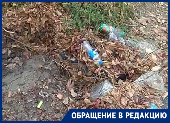 Новороссийцы борются с мусором в ливневках