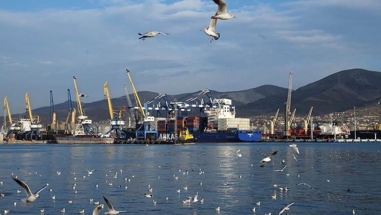 Новый совет директоров Новороссийского порта решил выплатить 10 млрд рублей дивидендов