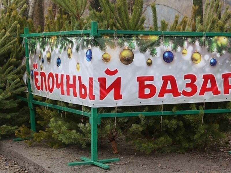 В Новороссийске начали создавать новогоднее настроение