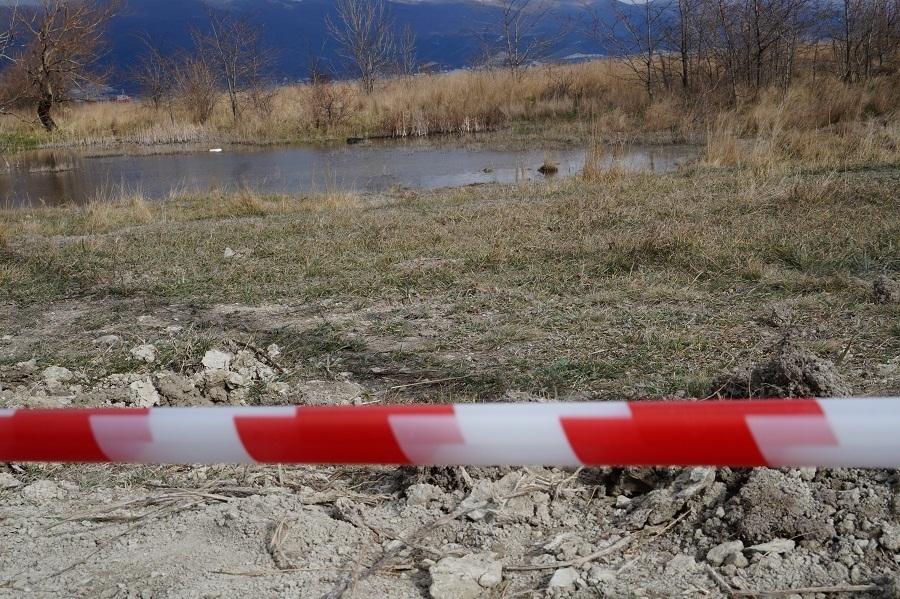 Новороссийские СМИ начали кампанию по обелению строителей, устроивших геноцид краснокнижникам