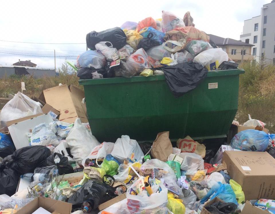 Из-за долгов УК «Юг Новороссийск» мусор перестанут вывозить в Мысхако