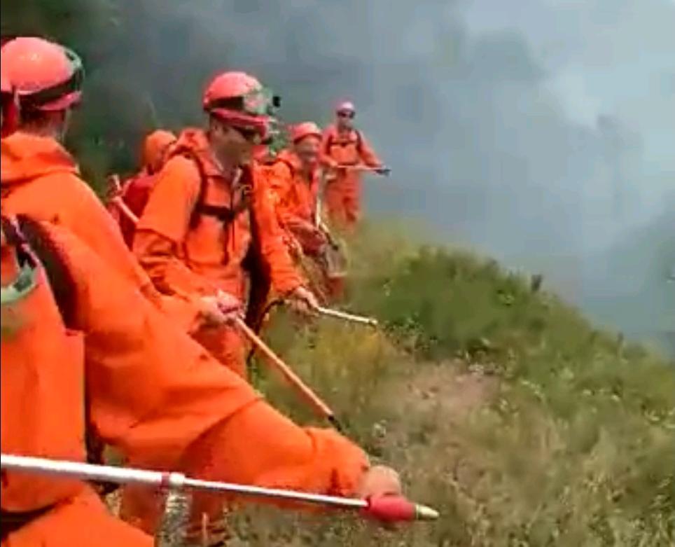 Проверить действия спасателей в Новороссийск приехали губернатор и глава МЧС