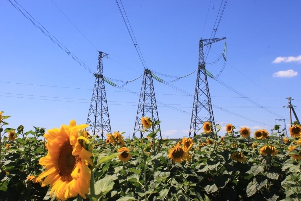 Девять объектов АПК присоединено к электросетям  в юго-западном энергорайоне
