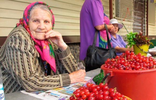 В Новороссийске опять стали гонять бабушек и «быковать»