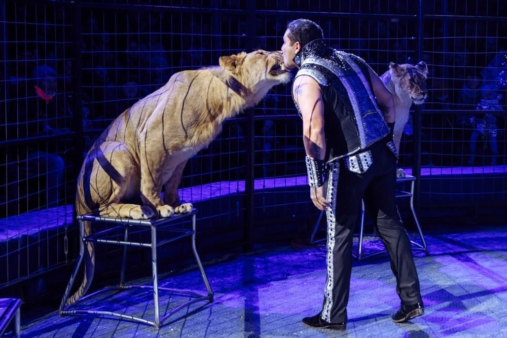 Цирк «Империал» приглашает посетить открытые репетиции