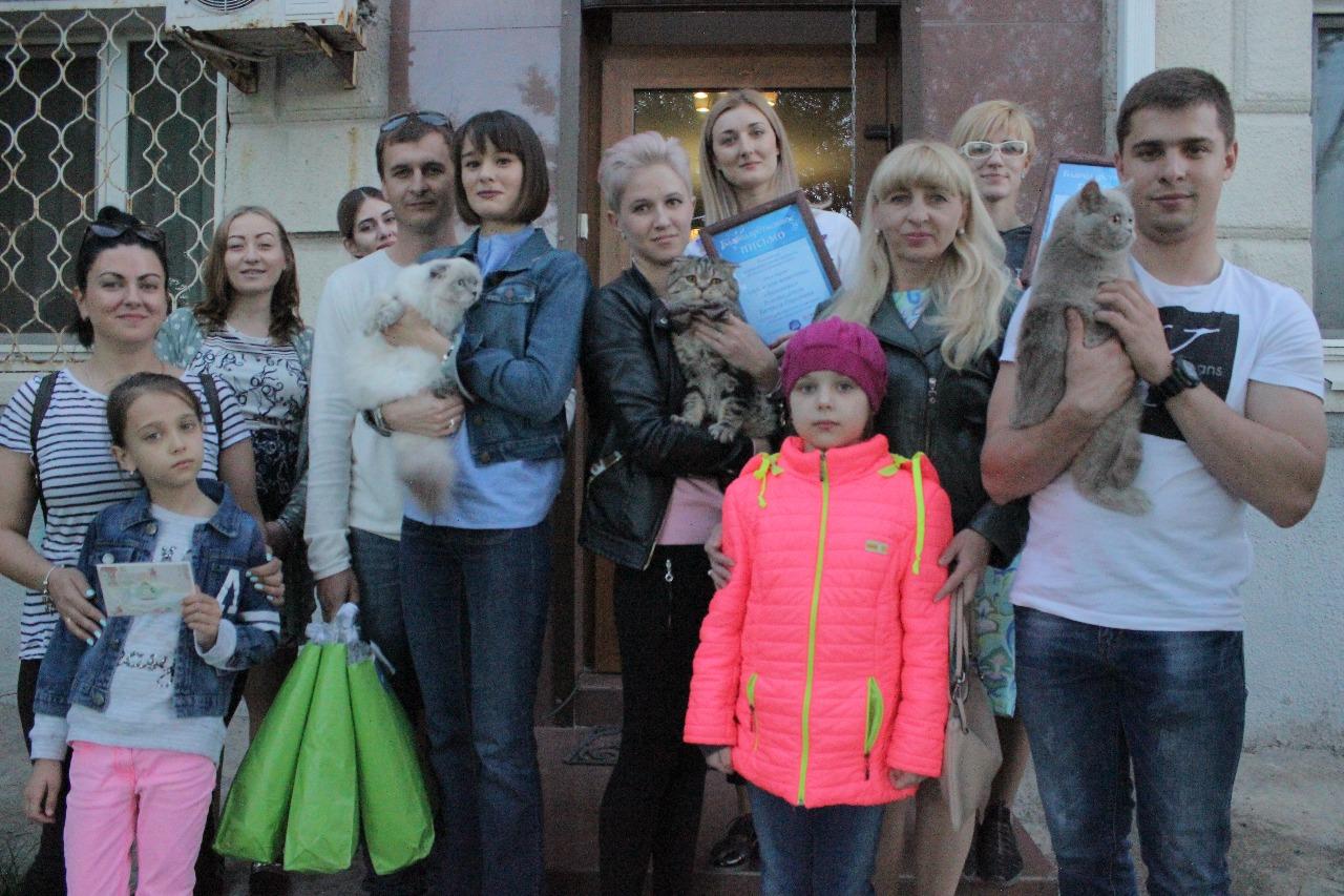 Самые красивые коты Новороссийска получили заслуженные награды