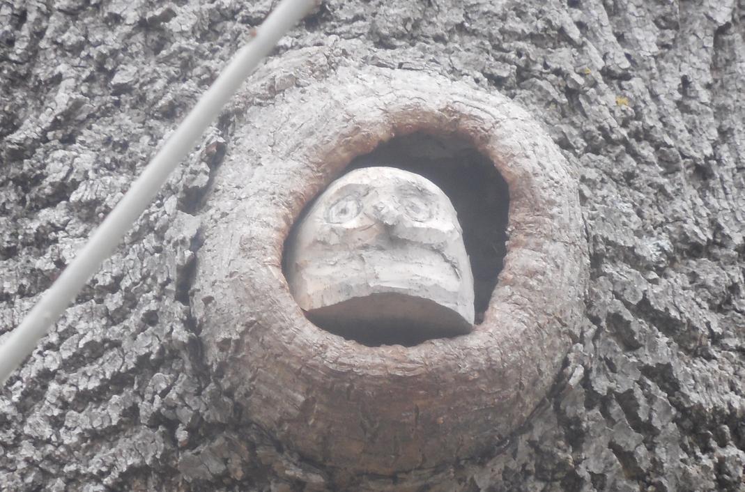 В Пионерской роще новороссийцы обнаружили трогательные произведения неизвестного скульптора