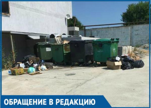 Мусор возле ТЦ в Новороссийске лежит уже неделю