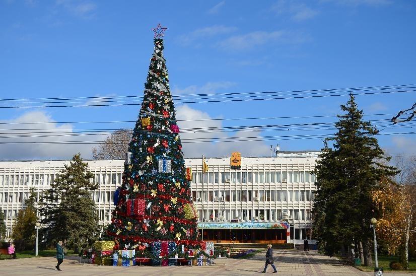 Новороссийская прокуратура запретила покупать новогоднюю ель за 6,7 млн рублей