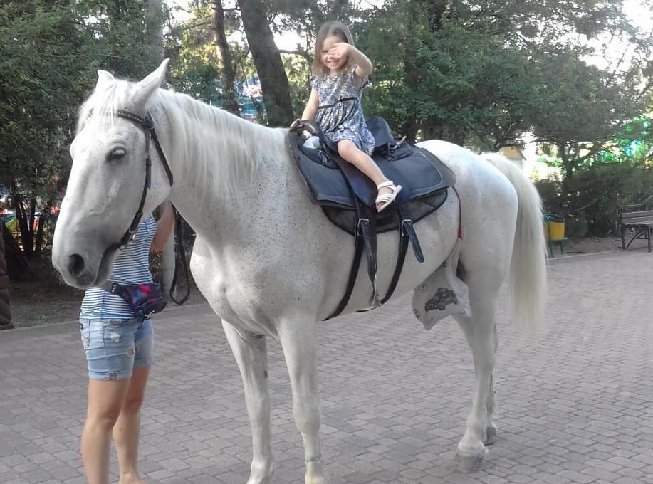- Хромая лошадь с изранеными ногами катает детей в парке Ленина! - паникуют новороссийцы