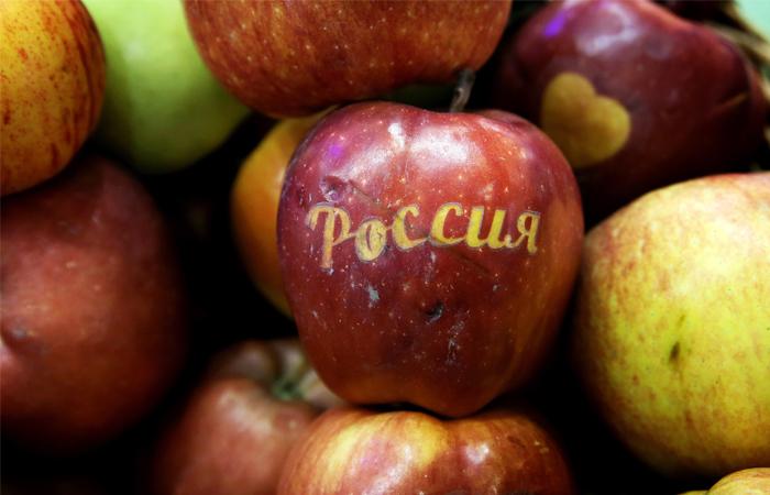 Впервые российские яблоки пошли на экспорт через Новороссийск