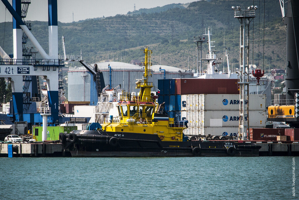 Порт Новороссийска опять признали нарушителем