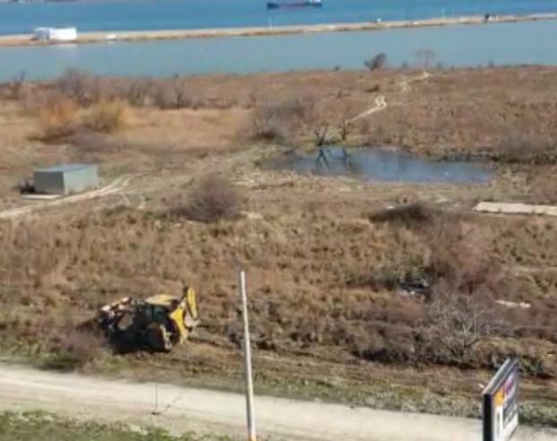 Экологи Новороссийска обратились на прямую линию с Президентом Владимиром Путиным