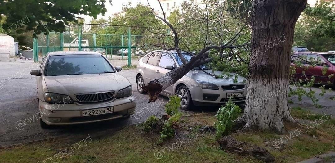 Утро после урагана: новороссийцы делятся  фотографиями последствий