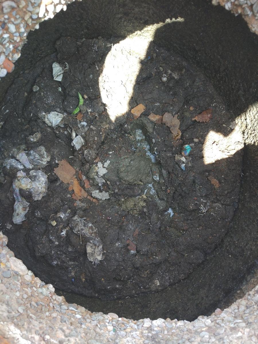 Новороссийцы забывают, что канализация — не выгребная яма