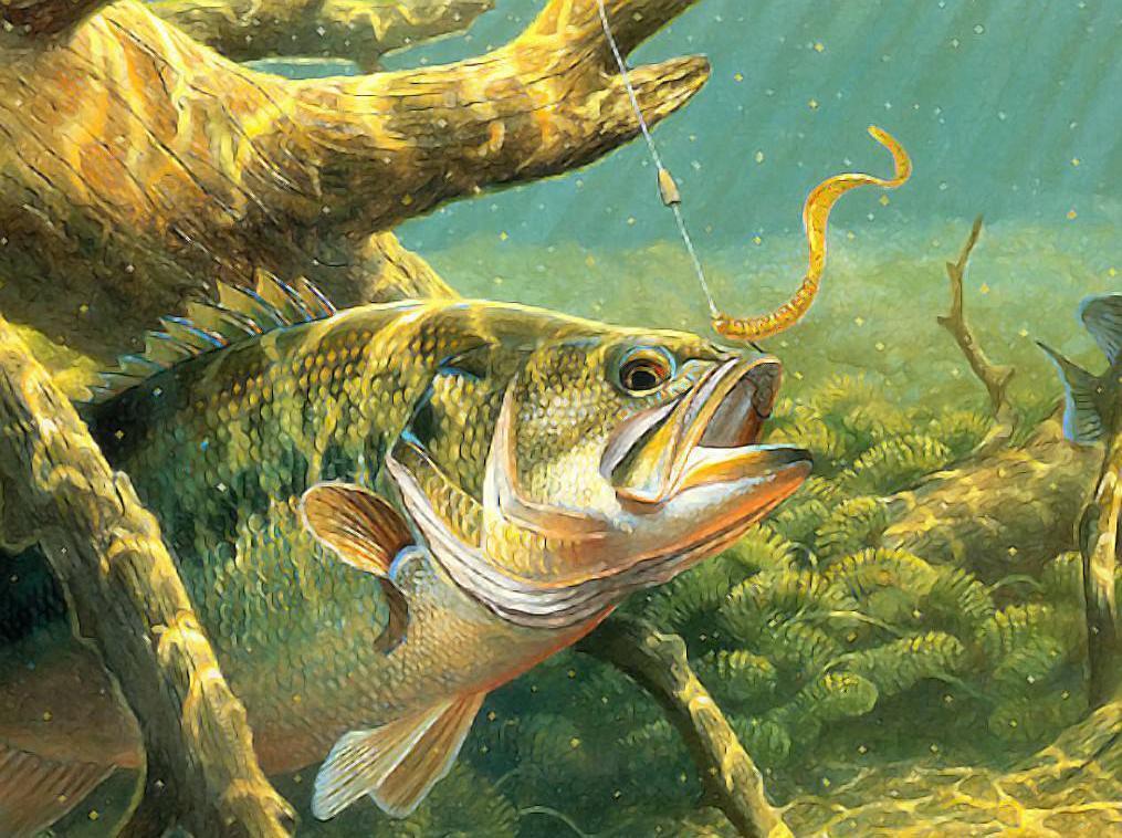 Отпустит ли жена ловить на Рыбана?